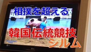 韓国の相撲『シルム』がなんか凄い、柔道とレスリングが混ざった複合競技!?