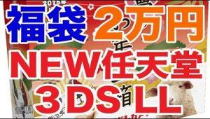【福袋】ヨドバシカメラのお年玉箱「NEWニンテンドー3DSLLの夢」を買ってきた!(2万円)#4