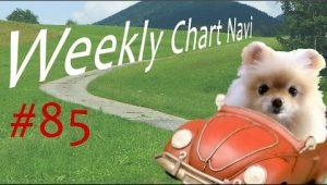 【週ナビ#85】今週の支点と視点